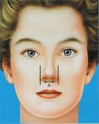 ارزیابی بینی از نظر زیبایی