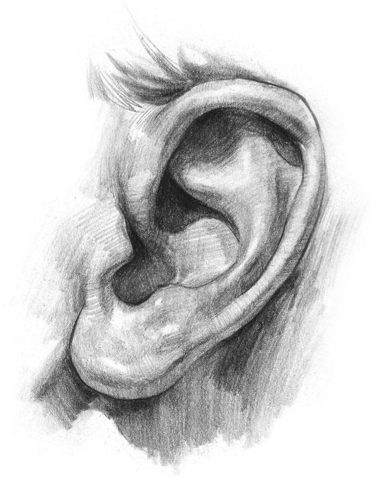 بیماری خود ایمنی گوش داخلی چیست؟