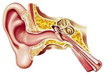 earside